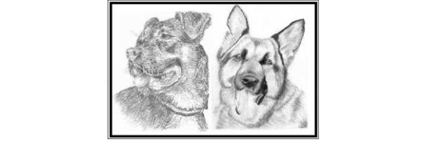 """logo - Veterinaria """"Mi perro Dinamita"""""""